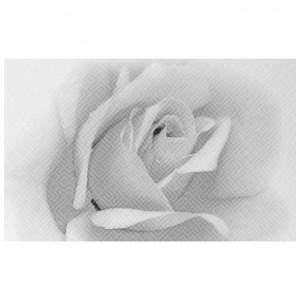 Декор Камелия чёрно-белый 02