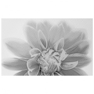 Декор Камелия чёрно-белый 03